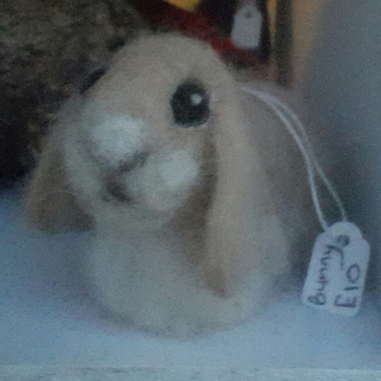 Adorable felt bunny in Shanklin shop. Must learn felting.