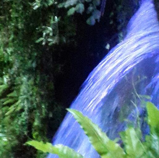 Waterfall at Shanklin Chine. Magic light