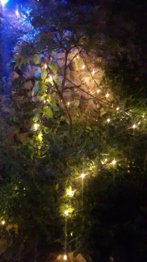 Even the pub gardens have fairy lights and ponds