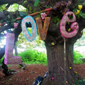 Growing the Love at Latitude